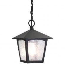 Black 100W E27 IP43 Garden Pendant